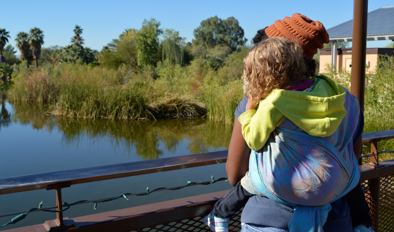 Palm trees and cattails line the dark green lake in the distance. Medium brown Momma with natural curly hair wears orange-brown knit cap and red lipstick. Her light brown, curly blond haired toddler wears a neon yellow hoodie. Baby is on Momma's back in a Double Hammock carry in a gradient orange to pink on pale blue background woven wrap with embossed jonquil flowers.