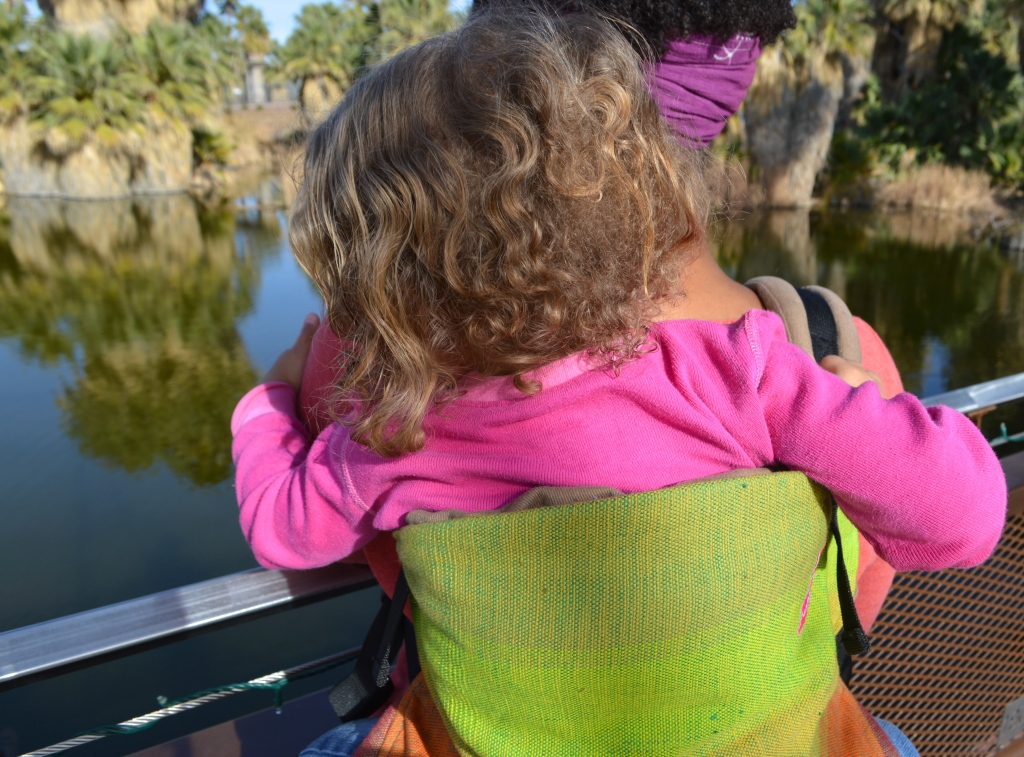 Medium brown Momma wears light brown blond curly haired toddler on her back in a grad handwoven soft structured carrier with colors from red to orange to yellow to lime green to grass green against a n orange weft. The carrier has a khaki colored waistband and shoulder straps. Baby is pointing at the turtles in the pond beyond them.