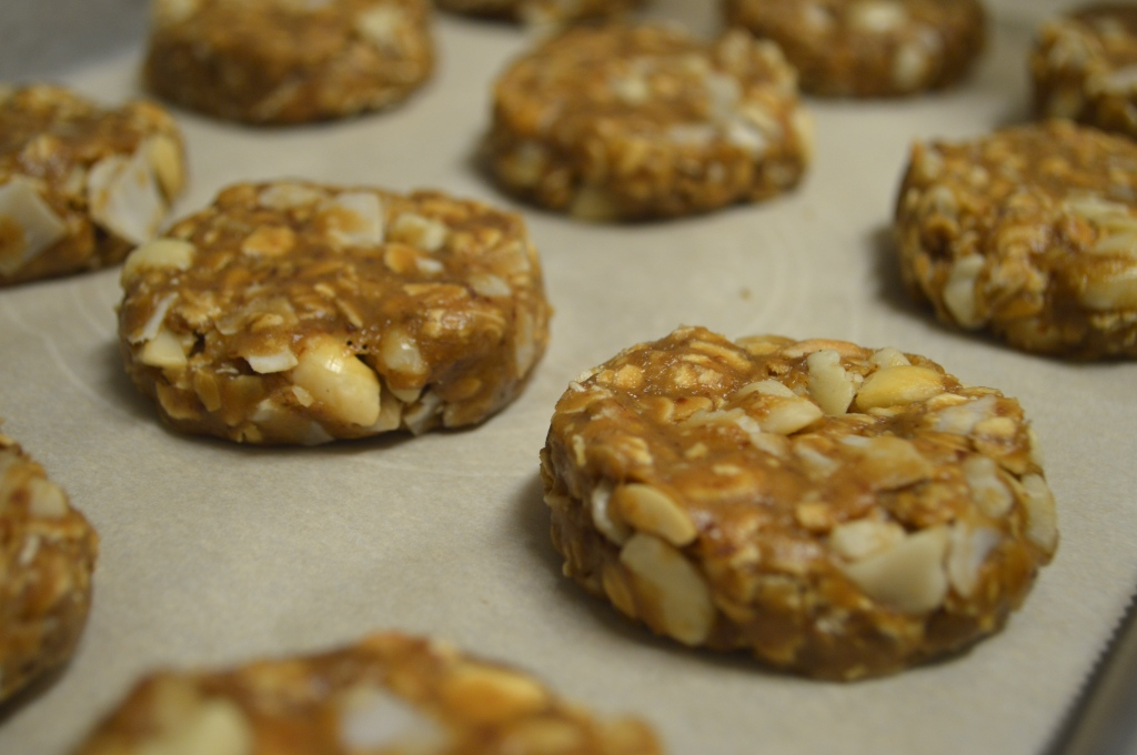 Close up of several cookies shaped into rounds with white macadamia nuts and large coconut flake